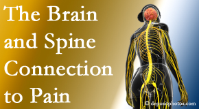 Chiropractic Solutions shares at the connection between the brain and spine in back pain patients to better help them find pain relief.