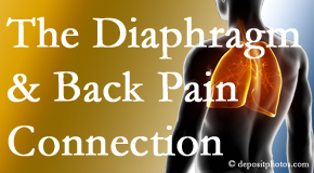 Chiropractic Solutions recognizes the relationship of the diaphragm to the body and spine and back pain.