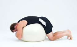 stability ball stretch 1