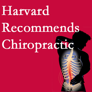 Chiropractic Solutions offers chiropractic care like Harvard recommends.